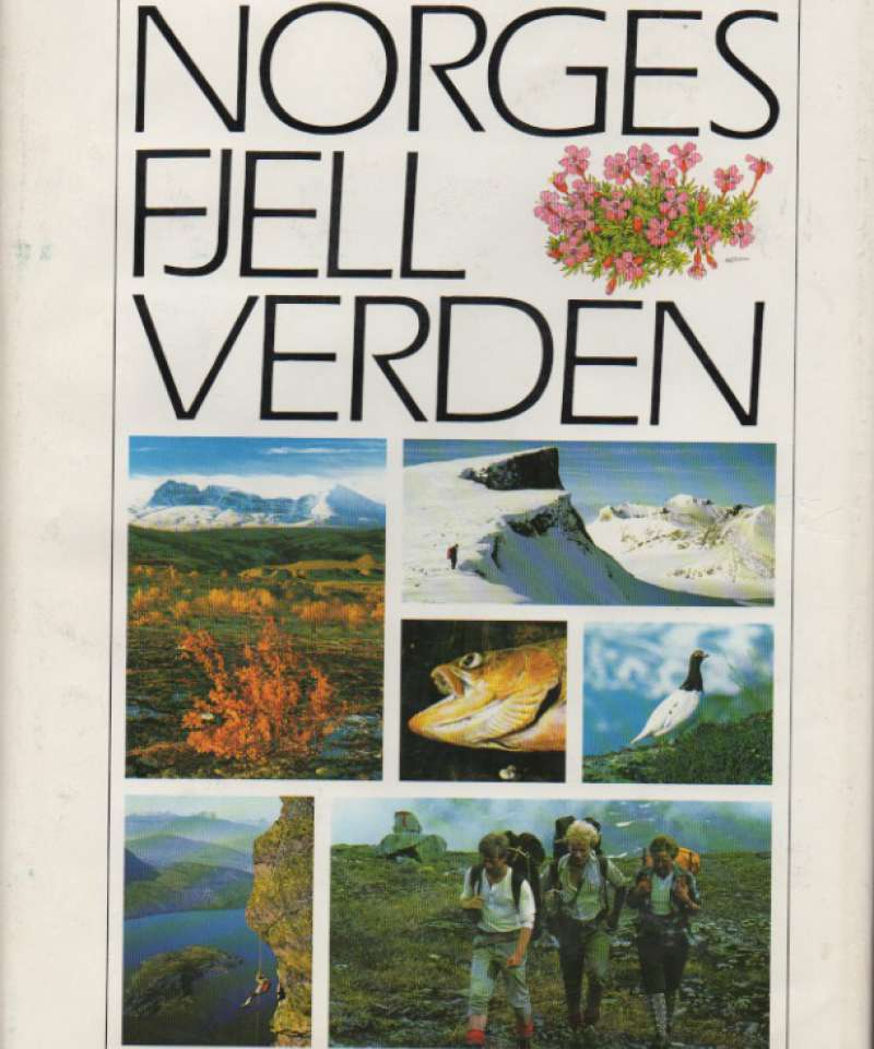 Norges fjellverden