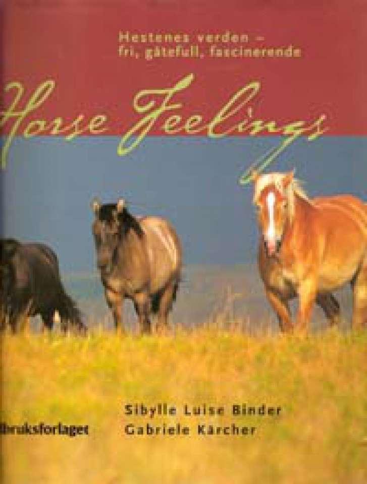 Horse Feelings