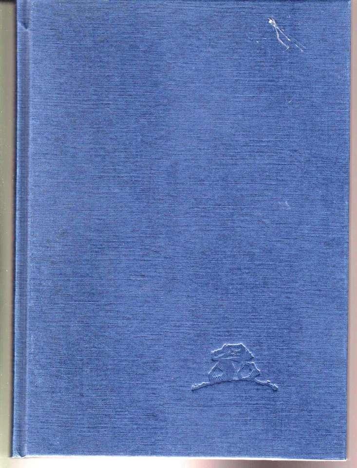 Hyttene i Jotunheimen