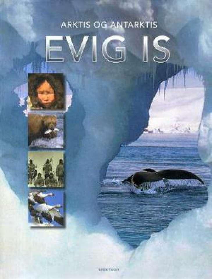 Arktis og Antarktis - Evig is