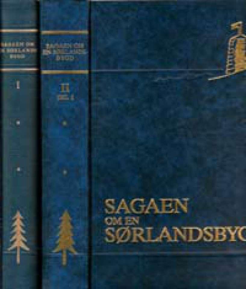 Sagaen om en Sørlandsbygd