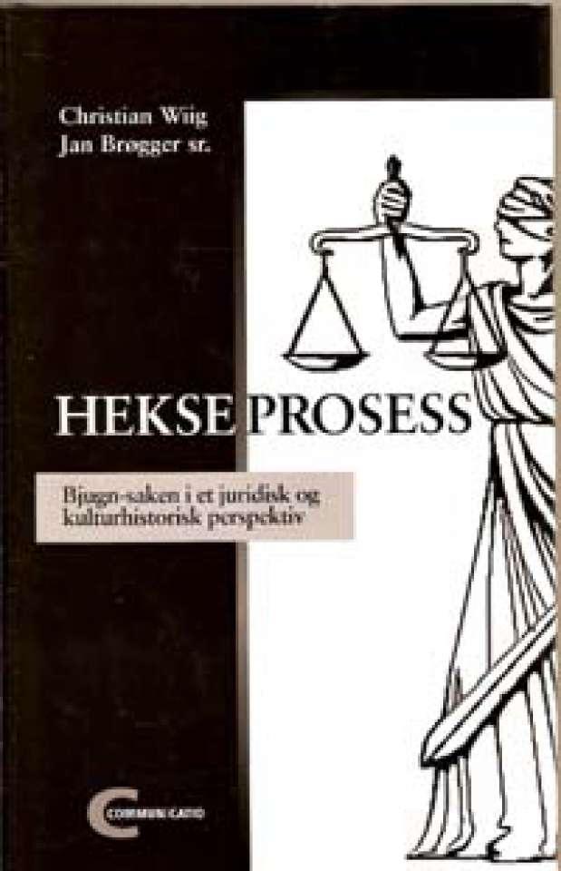 Hekseprosess - Bjugn-saken i et juridisk og kulturhistorisk perspektiv