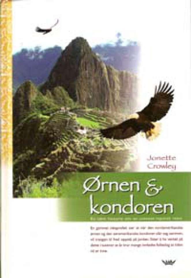 Ørnen & kondoren - En sann historie om en uventet mystisk reise