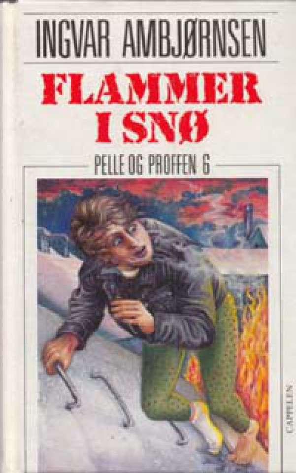 Flammer i snø - Pelle og Proffen 6