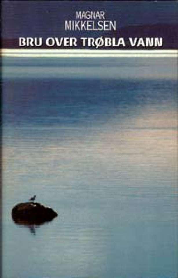 Bru over trøbla vann - Essays, dikt og noveller