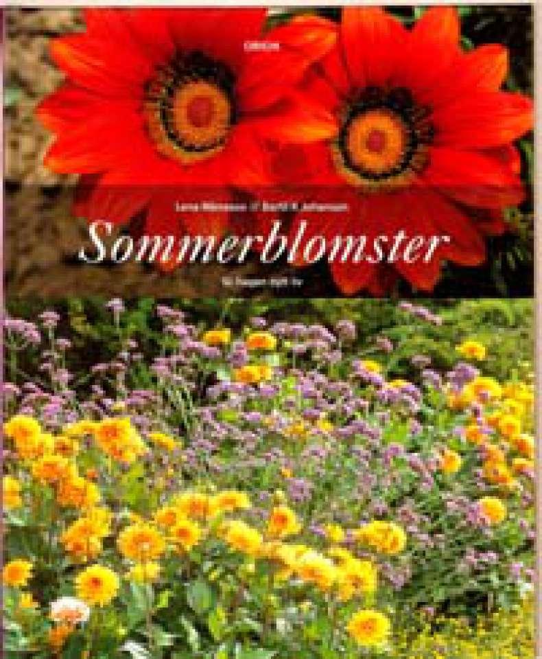 Sommerblomster - Gi hagen nytt liv