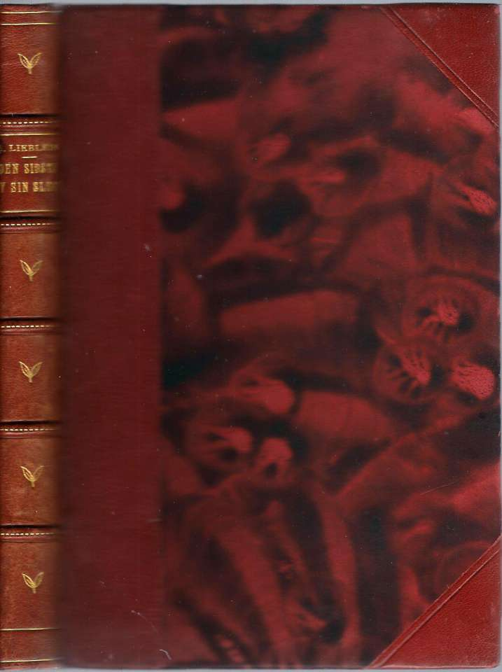 Den sidste av sin slegt - Et blad av Jonas Værns ungdomskrønike
