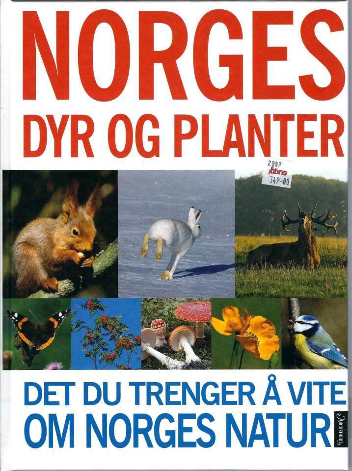 Norges dyr og planter - Det du trenger å vite om norges natur