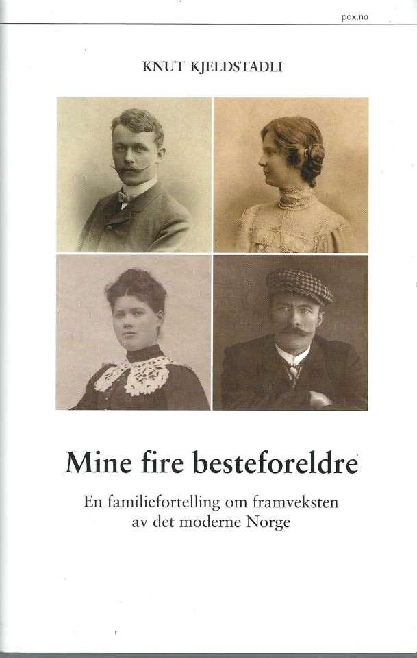 Mine fire besteforeldre - En familiefortelling om framveksten av det moderne Norge
