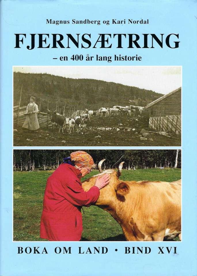 Fjærnsætring - En 400 år lang historie fra det indre østlandet