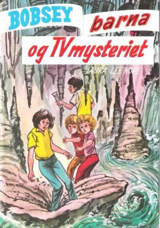 Bobsey barna og TV mysteriet