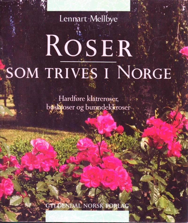 Roser som trives i Norge