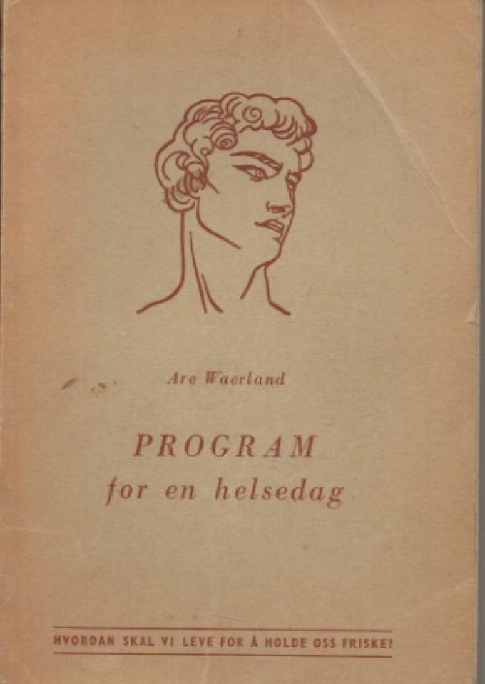 Program for en helsedag
