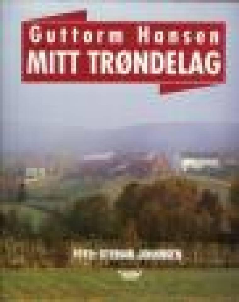 Mitt Trøndelag